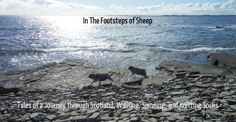 New Book In the Footsteps of Sheep