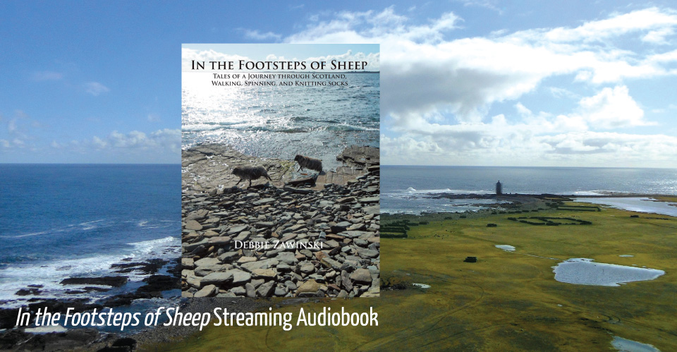 In the Footsteps of sheep image of book