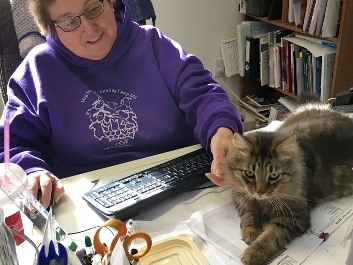 tami robus working with cat bill, a maine coon